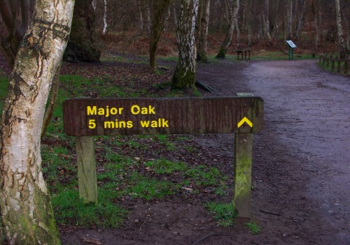 Not far to walk to the famous Major Oak tree, even fat lazy people can experience the wonders of nature, Sherwood Forest (2006)