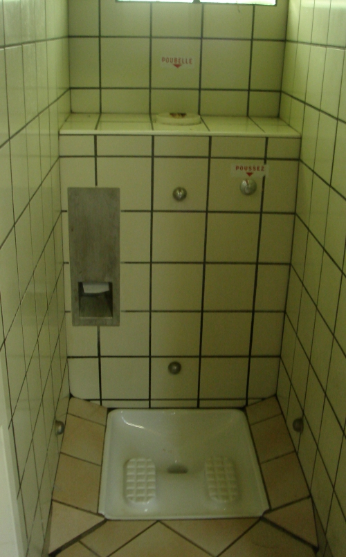 This is a ladies toilet, not sure how you use it, but looks interesting, France (2006)