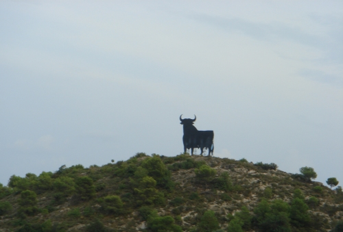 That's one big bull, no bull, Spain (2006)