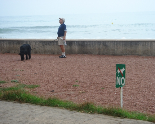 A tourist with his dog, he obviously can't understand the Spanish signs, Spain (2006)